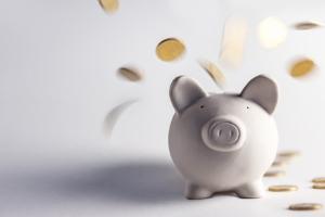 Um das Vermögensverzeichnis zu erstellen, sind genaue Angaben über die Einkommens- und Vermögensverhältnisse nötig.